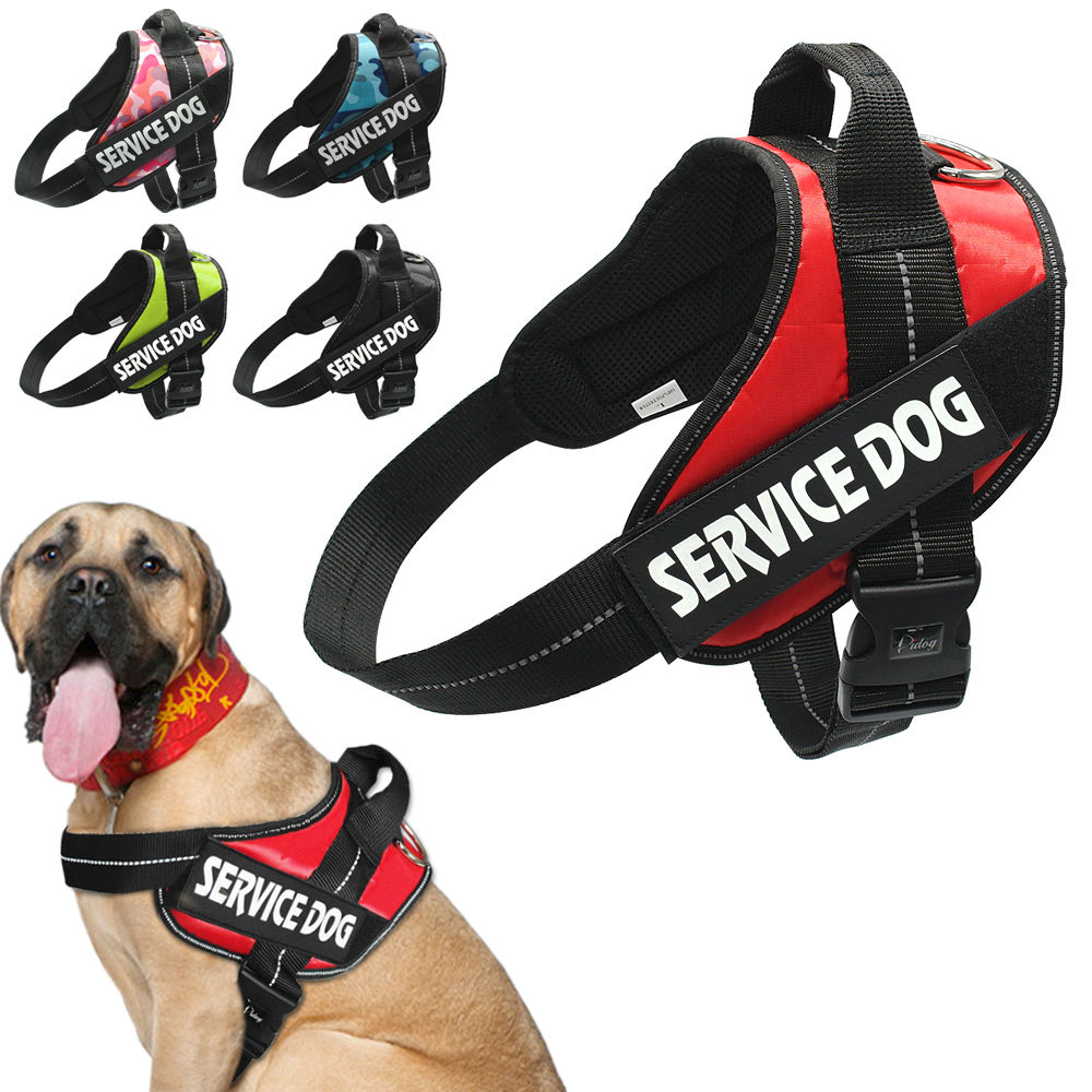 Very BarkDay Service Dog Vest Harness – Dogs Are Better People KD42